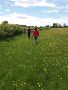 Upper Moreton Rural Activities - walking in the meadow