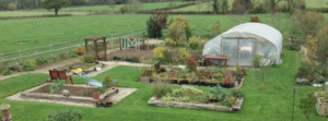 Care Farming and Rural Activities at Upper Moreton